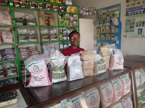 New Report Finds African Seed Industry Now Dominated by Local Start-Ups