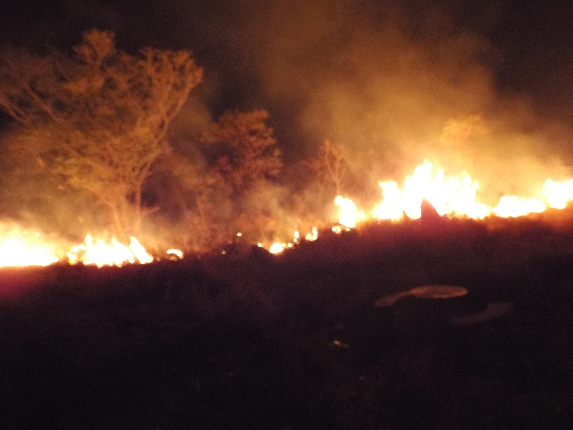 Zimbabwe facing challenges in controlling veld-fires:EMA