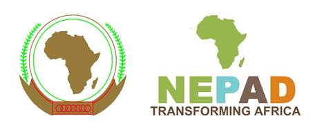 NEPAD Agency Unlocks Knowledge and Investment for Energy Developers