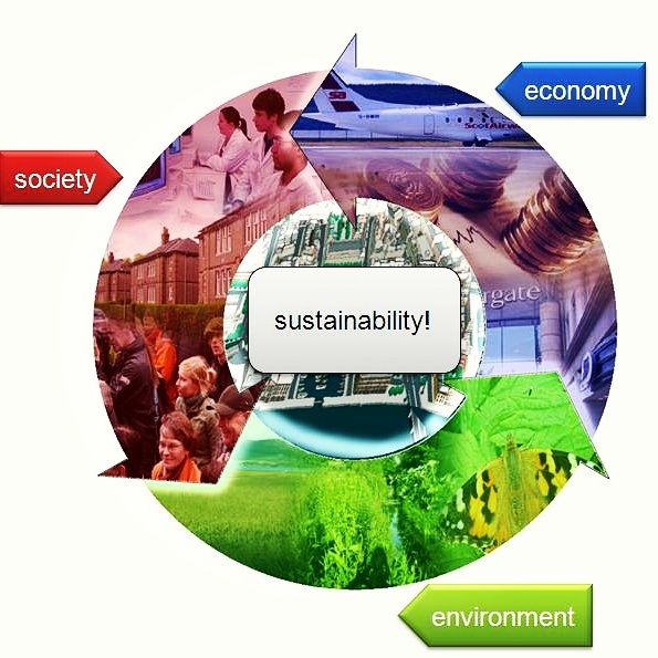 Impact of crowd-sourced platforms in driving sustainability in Africa
