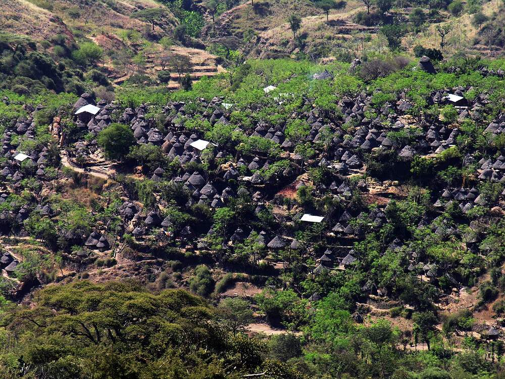 The Glorious Spectacle of Konso Heritages