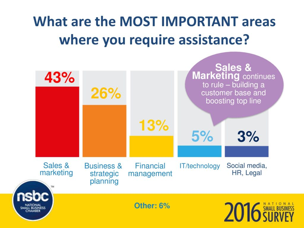 Graphical Representation: The most important areas where SME's require assistance